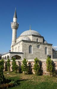 Ahmet Pasha Net Worth